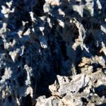 ah-ah lava, Isabela Island, Galapagos Islands, Ecuador