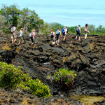 Scrambling off the beach and across a lava field, Isabela Island, Galapagos Islands, Ecuador