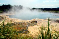 Thermal pool, Sempaya hot springs, Semuliki National Park, Uganda, Africa